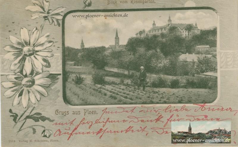 Blick vom Rosengarten