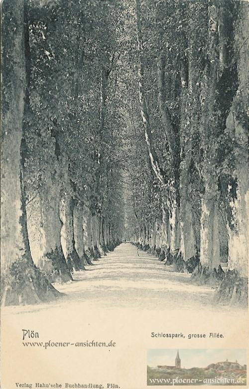 Schlosspark, grosse Allee