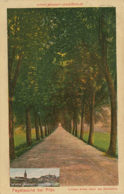 Fegetasche bei Plön - Linden-Allee nach der Oelmühle - 1927
