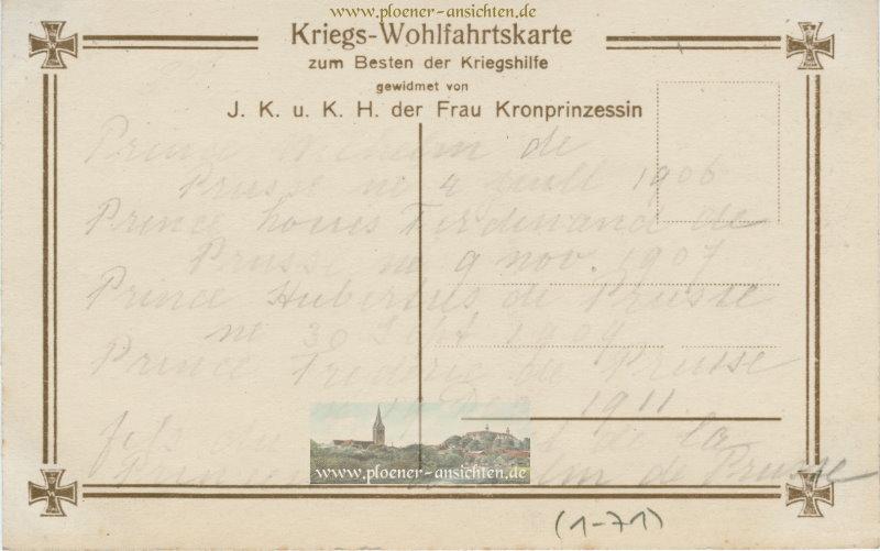Die Söhne unseres Kronprinzenpaares in Feldgrau - 1906